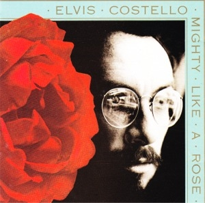 Elvis Costello Mighty Like a Rose cover art