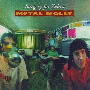 Metal Molly Surgery for Zebra cover art
