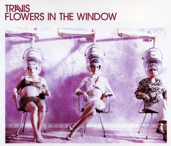 Travis Flowers in the Window Cover Art