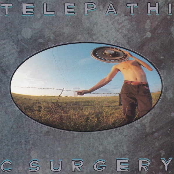 The Flaming Lips Telepathic Surgery cover art