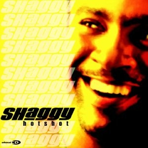 Shaggy Hot Shot cover art