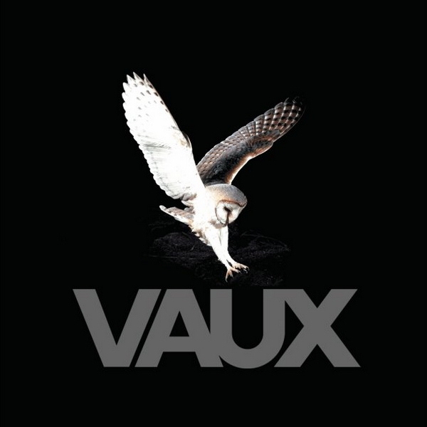 Vaux Beyond Virtue, Beyond Vice Cover Art