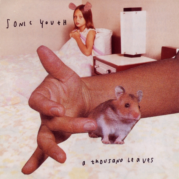 Sonic Youth A Thousand Leaves cover art