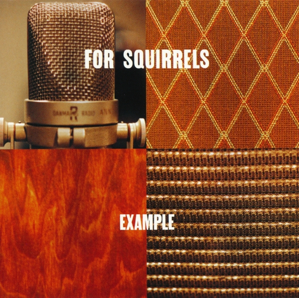 For Squirrels Example cover art