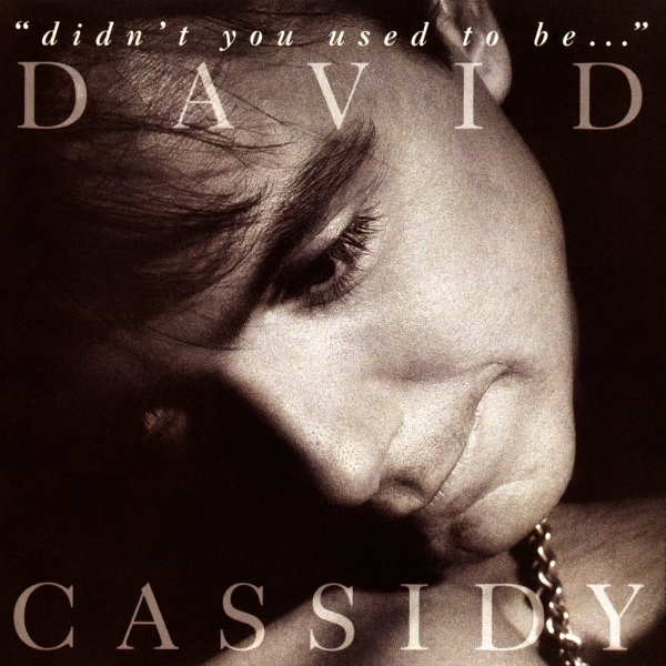 "David Cassidy ""Didn't You Used to Be…"" Cover Art"