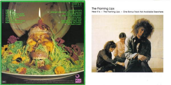 The Flaming Lips Hear It Is cover art