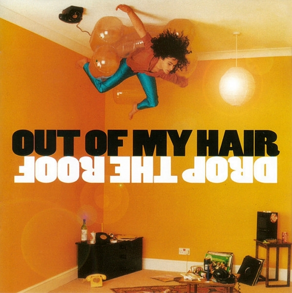 Out of My Hair Drop the Roof cover art