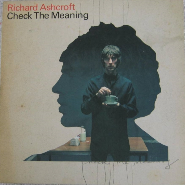Richard Ashcroft Check the Meaning cover art