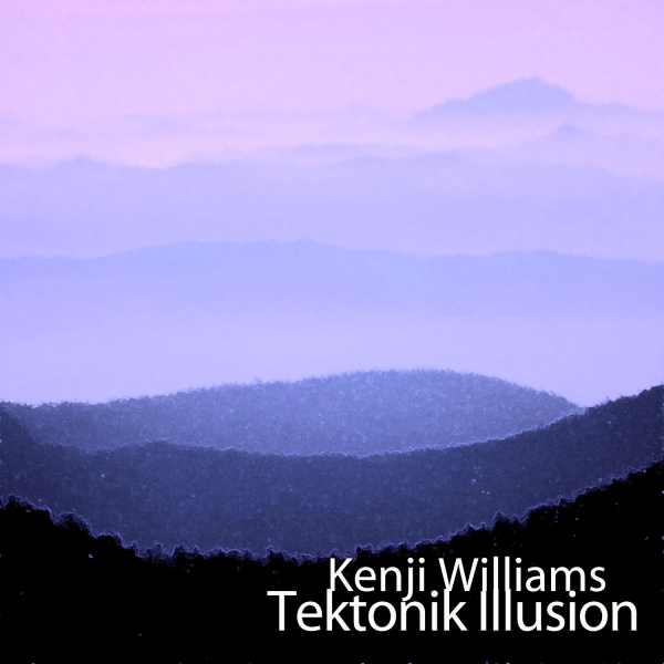 Kenji Williams Tektonik Illusion cover art