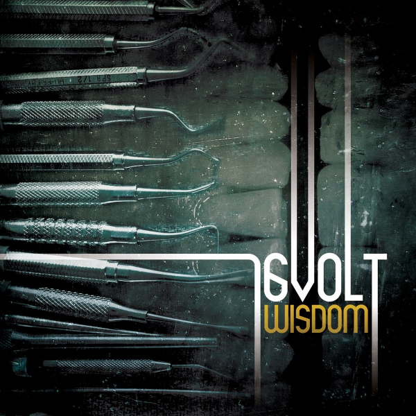 16volt Wisdom cover art