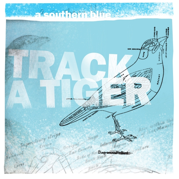 Track a Tiger A Southern Blue Cover Art