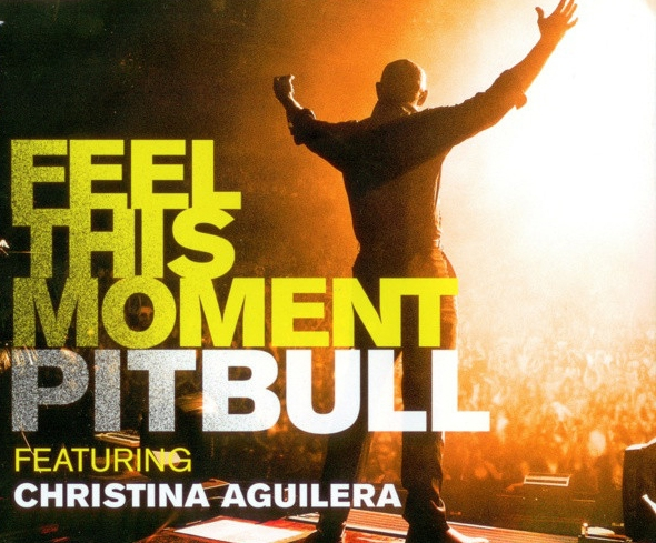 Pitbull feat. Christina Aguilera Feel This Moment Cover Art
