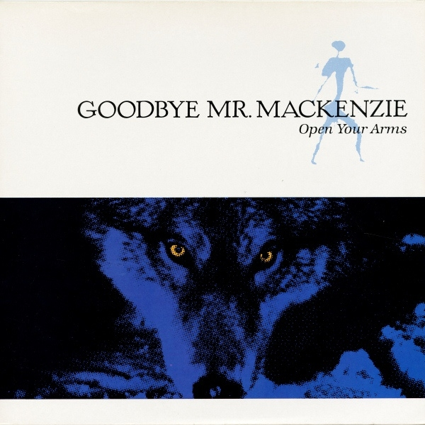 Goodbye Mr. Mackenzie Open Your Arms cover art