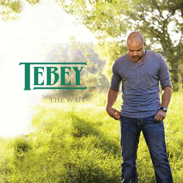 Tebey The Wait Cover Art