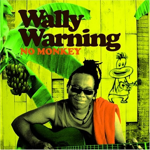 Wally Warning No Monkey cover art