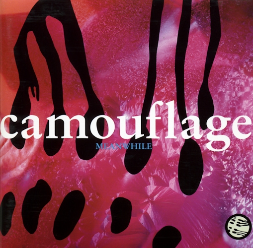Camouflage Meanwhile Cover Art