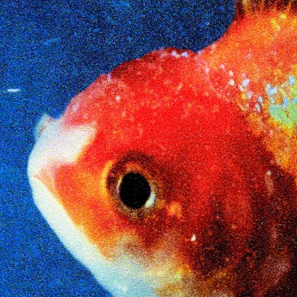 Vince Staples Big Fish Theory Cover Art