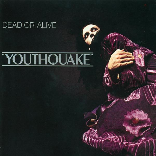 "Dead or Alive ""Youthquake"" Cover Art"
