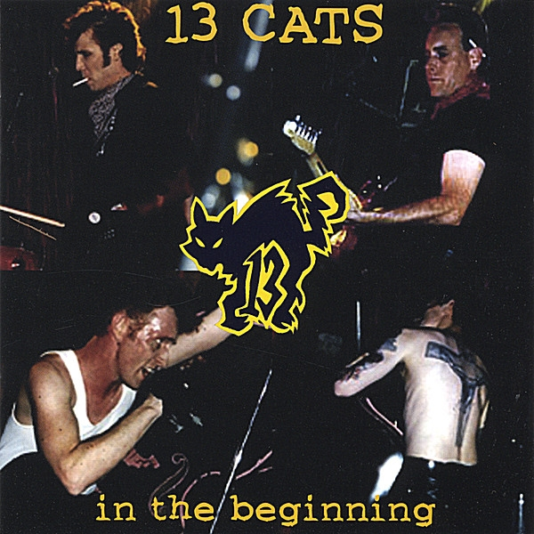13 Cats In the Beginning Cover Art